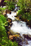 Mountain clean water spring. Between rocks and green grass Stock Photos