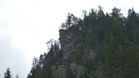 Mountain Cliff and Fir Trees. Timelapse on a mountain crag with fir trees gown on top stock footage