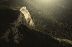 Mountain cliff rising from pine tree forest. Mountain landscape with cliff rising from pine tree forest stock images