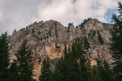 Mountain cliff, rocks, forest Stock Photo