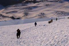 Mountain climbers climbing up Mt. Rainier. At sunrise Royalty Free Stock Photography