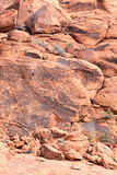 Mountain Climbers Scaling a Red Rock Wall in the Desert Royalty Free Stock Photos