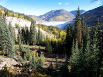 Mountain Colors. Pine and Aspen trees, fog and peaks in the Colorado Rockies stock photography