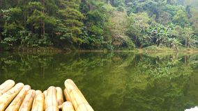 Mountain coniferous tropical forest with palms is reflecting in calm water of highland lake with bamboo raft in south. Thailand, Mae Hong Son Region. 4k UHD stock video footage
