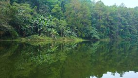 Mountain coniferous tropical forest with palms is reflecting in calm water of highland lake in south Thailand, Mae Hong. Son Region. 4k UHD stock footage