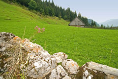 Mountain cottage. Old rocks and green meadow royalty free stock images