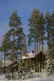 Mountain cottage. A mountain cottage on a bright winter day stock images