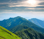Mountain covered green trees in background of sunny sky Royalty Free Stock Photo