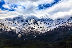 The mountain covered by snow in cloud and forest Royalty Free Stock Image