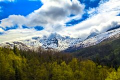 The mountain covered by snow, forest and cloud Royalty Free Stock Image