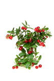 Mountain cranberry Royalty Free Stock Image