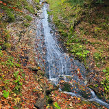 Mountain creek. In Bavarian Alps Stock Images