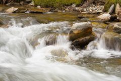 Mountain creek. Mountain cold creek flowing fast stock photography