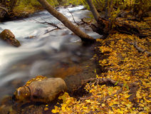 Mountain creek. At Fall stock images