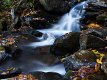 Mountain creek Royalty Free Stock Photos