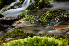Mountain Creek Stock Photography