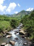 A mountain creek Stock Photos