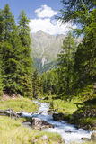Mountain Creek in Austria Royalty Free Stock Images