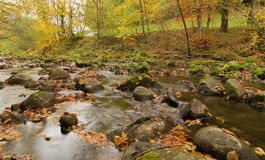Mountain creek on autumn. Ch Stock Photography