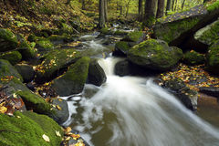 Mountain creek Stock Image