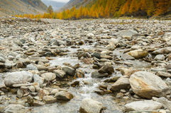 Mountain creek in autumn Stock Photography