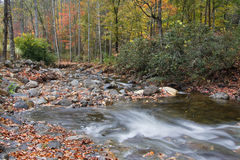 Mountain Creek in the Autumn Season Stock Photography