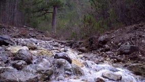 Mountain creek in autumn stock video