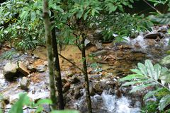 Beautiful small waterfall on mountain river forest in Thailand royalty free stock images