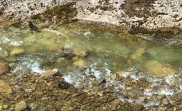 Mountain creek. Clear mountain creek in Bosnia and Herzegovina mountains Royalty Free Stock Image