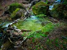 Mountain creek Stock Photo