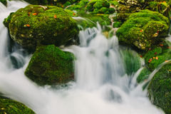 Mountain creek detail with mossy rocks and crystal clear water Stock Images