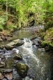 Mountain creek doubrava Royalty Free Stock Photography