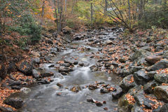 Mountain Creek in the Fall Royalty Free Stock Photos