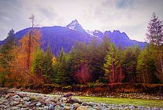 Mountain creek. Fall water rock tree leafs Royalty Free Stock Photography