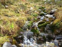 Mountain creek flow Royalty Free Stock Images