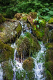 Mountain creek flowing through mossy boulders Royalty Free Stock Photos