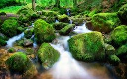 Mountain creek gently cascading through rocks Stock Image