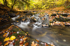 Mountain creek and golden autumn leaves. Mountain creek with small waterfalls cascade and golden autumn leaves Stock Photography