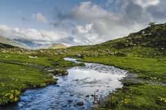 Mountain Creek. Green grass. Blue sky with clouds Stock Photo