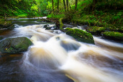 Mountain creek in Ireland Royalty Free Stock Image