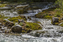 Mountain creek in Karwendel valley. Cheerfully gushes the small creek on countless water levels through the Karwendel valley in Tyrol royalty free stock images