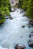 Mountain creek with leaves and rocks Royalty Free Stock Photos