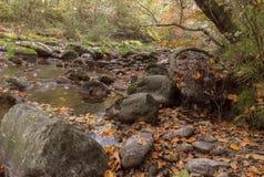 Mountain creek on mountain. Switzerland Royalty Free Stock Image