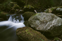 Mountain creek in the national park Royalty Free Stock Images