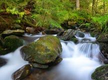 Mountain creek Stock Images