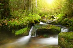 Mountain creek in the National park Sumava Stock Photo