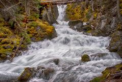 Free Mountain Creek Near Upper Lake Kananaskis Stock Photo - 55278430