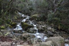Mountain creek from Peneda Geres National Park royalty free stock photos