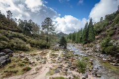 Mountain creek in Peneda Geres, Portugal stock photography
