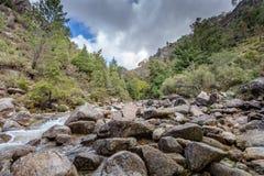 Mountain creek in Peneda Geres, Portugal.  royalty free stock images